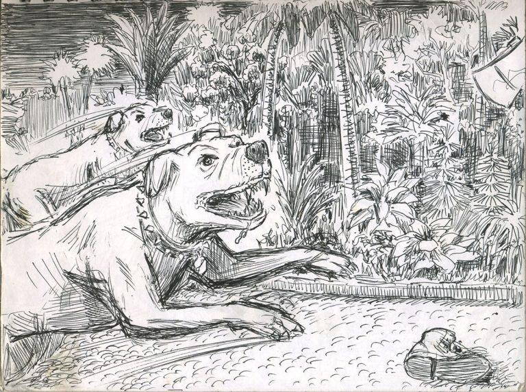 166-DogsAttacking