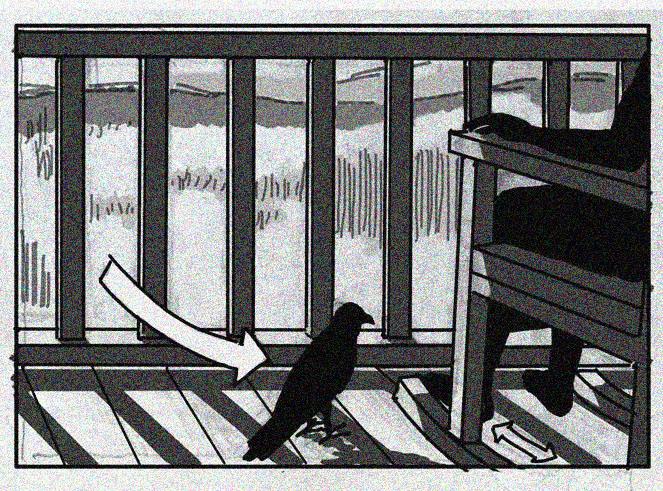 CrowLanding